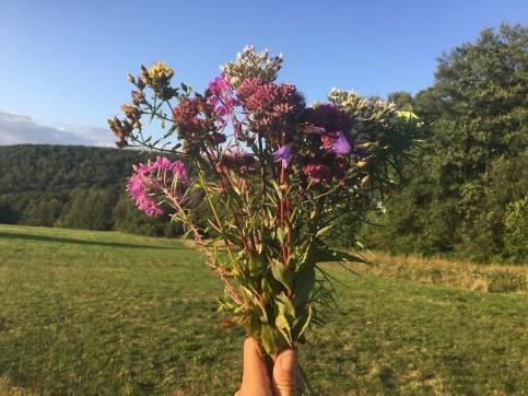 Bouquet réalisé par l'anthropologue
