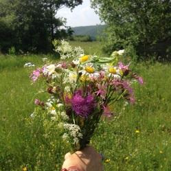 Bouquet pour planètes-lumière - Copie